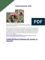 Los Casos de Philip Chancellor
