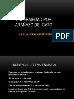 enfermedad por arañazo de gato pdf