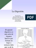La Digestion2