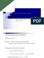 RepresentacaoNumerica.pdf