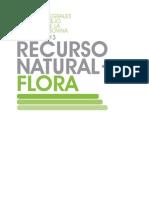 Cartilla 3 Flora Sincub