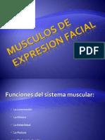 MUSCÚLOS DE EXPRESION FACIAL