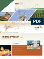 Andhra Pradesh 110313