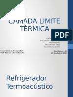 CAMADA LIMITE TÉRMICA - Slides