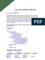 HUESOS (3)
