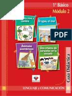 lenguaje1bsicomdulo2profesor-110601195836-phpapp01