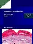 Acantholytic Actinic Keratosis, M 76, Left Forearm