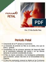 16 Periodo Fetal (2)