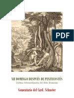 XII DOMINGO DESPUÉS DE PENTECOSTÉS. card. schuster