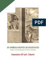 XIV DOMINGO DESPUÉS DE PENTECOSTÉS. card. schuster