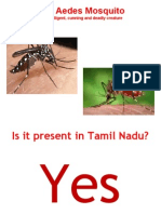 Dengue - Awareness.ppt
