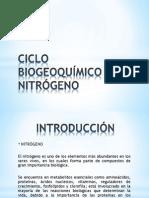 CICLO BIOGEOQUÍMICO DEL NITRÓGENO