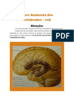 Atlas Fotografico Neuro Anatomia