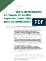 Germinacion Viveros