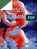Diapositivas Discos Bilaminar y Trilaminar