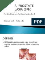 Benigna Prostate Hyperplasia (Bph)
