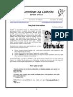 Boletim - Guerreros Da Coleita