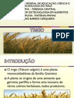Trigo PDF