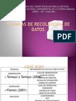 Técnicas de Recolección de Datos