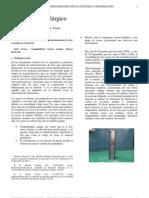 Informe Templabilidad.docx