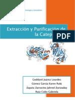 Catepsina D Labenzimologia