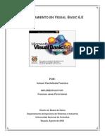 Entrenamiento_VisualBasic_6