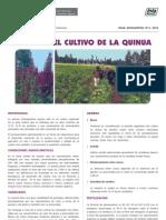 Hd Manejo Del Cultivo de La Quinua