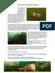 Actie Duik de Noordzee Schoon