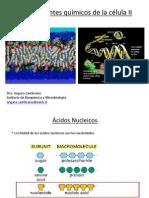 componentesquimicosII.pdf