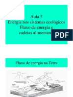 Aula 3 Fluxo Energia Turismo