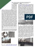 TM244-2012-I-EF.doc