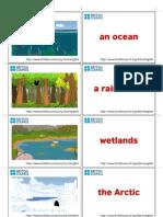 Environment Flashcard1