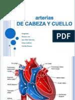 Vascularizacion Cabeza y Cuello