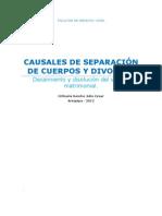 CAUSALES DE SEPARACIÓN DE CUERPOS Y DIVORCIO