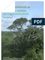 Amazonia Eco-Utility Workshop Report April 09 SUMMARY