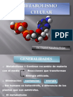 2 Metabolismo Celular y Bionergetica