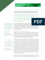 Sustainable Urban Underground Development