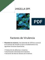 Características de Shigella