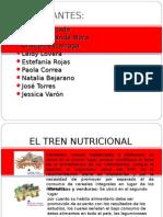 EL TREN NUTRICIONAL