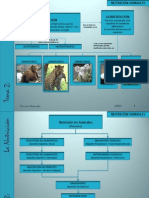 2eso-nutricinanimalesyplantas-110216090542-phpapp01