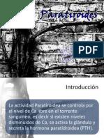 Paratiroides.pptx