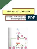Inmunidad Celular