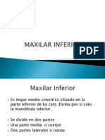 Maxilar Inferior
