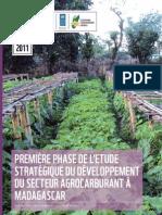 Première Phase de l'Etude Stratégique du Développement du Secteur Agrocarburant à Madagascar – Etat des Lieux de la Situation Actuelle du Secteur (PNUD, Plateforme Agrocarburant Durable, WWF – 2011)