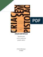 Criação sem Pistolão - Carlos Domingos