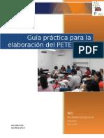 Guia Practica Elaboracion PETE PAT