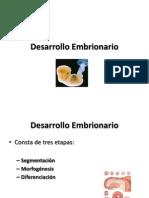 Desarrollo Embrionario 4 y 5 Sem