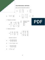 Guia Ejercicios Matrices Y Determinantes