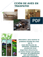 AVES TRASPATIO1.pdf