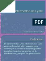 74739149 Enfermedad de Lyme